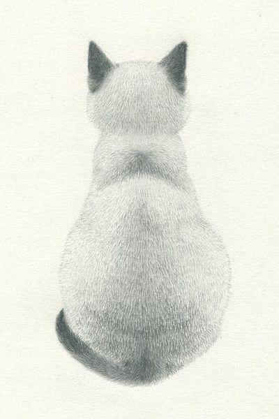Adiós Sarita (31-12-1993 nació y fué al cielo de los gatitos dulces ,buenos y…