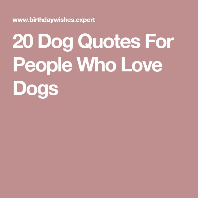 Best 25+ Quotes About Dogs Ideas On Pinterest
