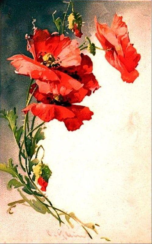 Морем для, советские открытки с маками