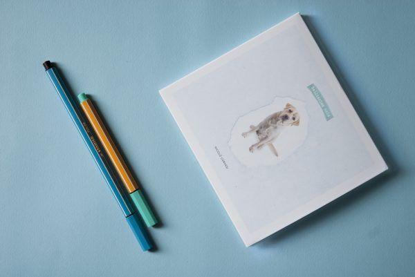 graphic design for bellissima noia, music album by Nicolò Carnesi  |  animalform ∼ design studio