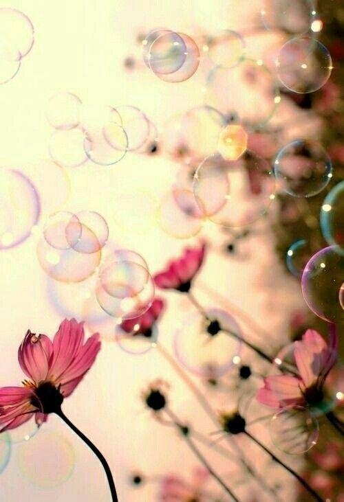 Seifenblasen und Blumen