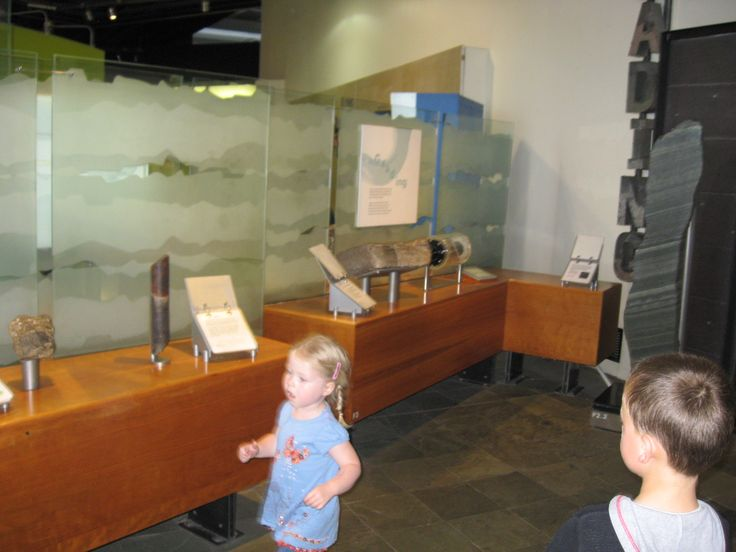 Natural History Museum, children interactive, Get money chidren's education http://getready.getresponsepages.com