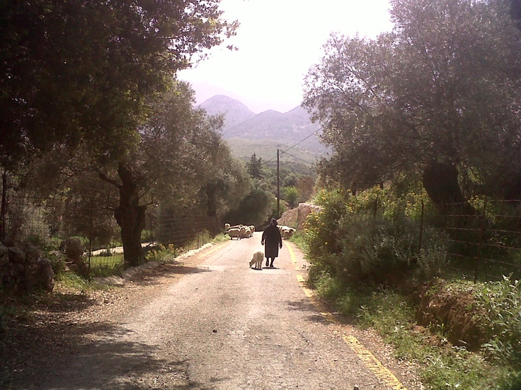on the road from Vamos