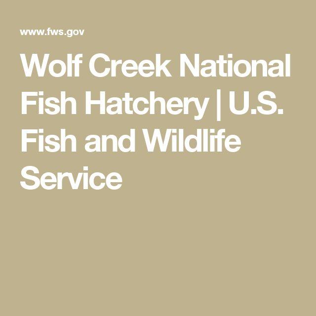 Wolf Creek National Fish Hatchery | U.S. Fish and Wildlife Service