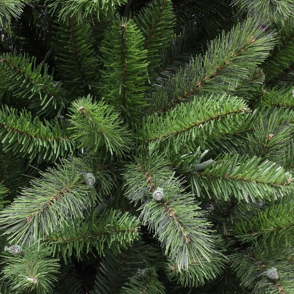 The 25+ best Fraser fir christmas tree ideas on Pinterest | Balsam ...
