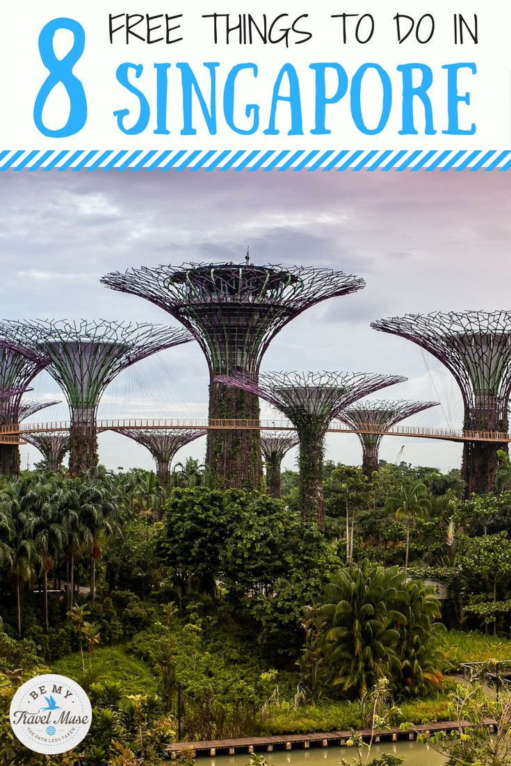 Want to visit Singapore on a budget? Here are 8 of the best free things to do in the country! Budget travel in Asia. || Be My Travel Muse
