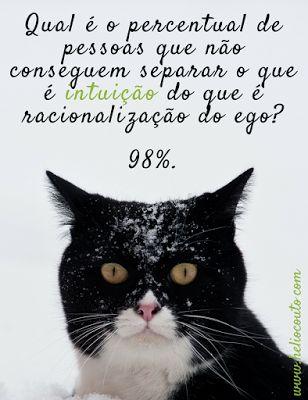 Prof. Hélio Couto: Discernimento