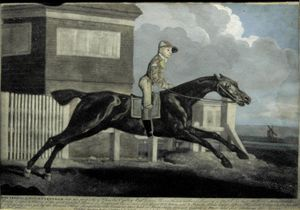 The Terrible Horse Trentham by George Townly Stubbs
