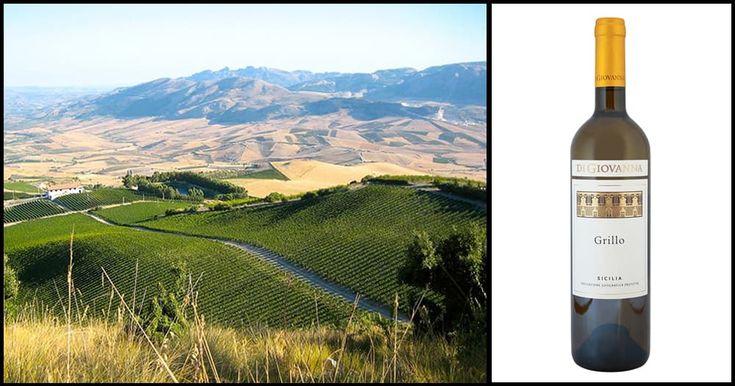 Grillo Wine: The Hidden Treasure of Sicilian Hinterland