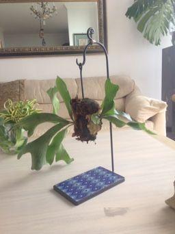 Platicero Mini Angie Oh! 60cm de alto, base rectangular de arabescos azules. Info por whatsapp 3152227007