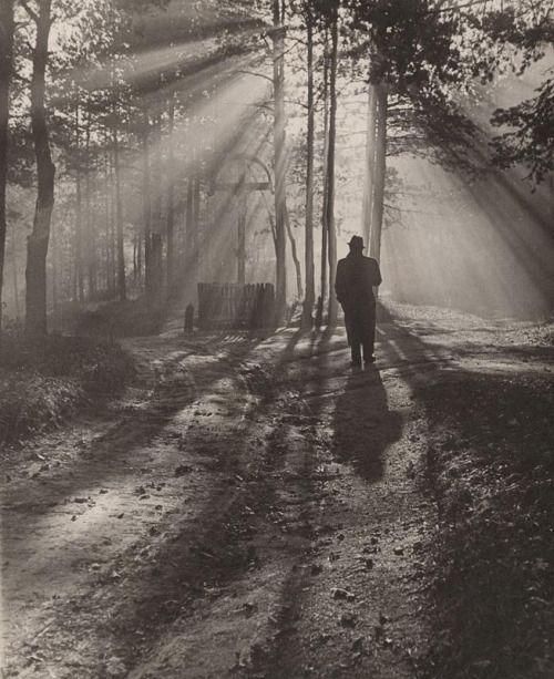 Jesenné ráno / Autumn morning, 1939, Ján Halaša. Slovakian (1893 - 1981)