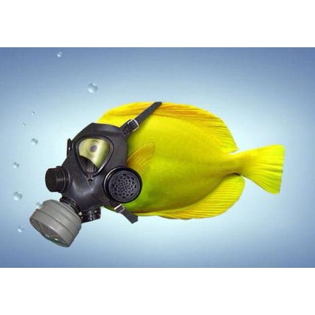 Anti ocean pollution