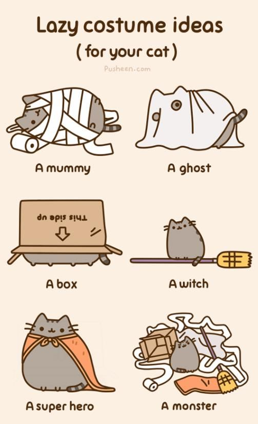 Lazy costume ideas for your cat