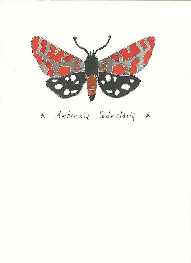 Linda Riva - butterfly