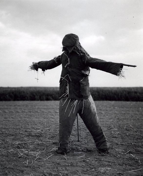 Robert Doisneau // Scarecrows - Beauce Mai 1962