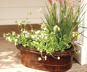 Vintage wash basin planter from NapaStyle... would love this for an herb garden: Gardens Ideas, Container Gardens, Balconies Gardens, Vintage Wash, Washbasin, Wash Tubs, Basin Planters, Herbs Gardens, Outdoor Spaces