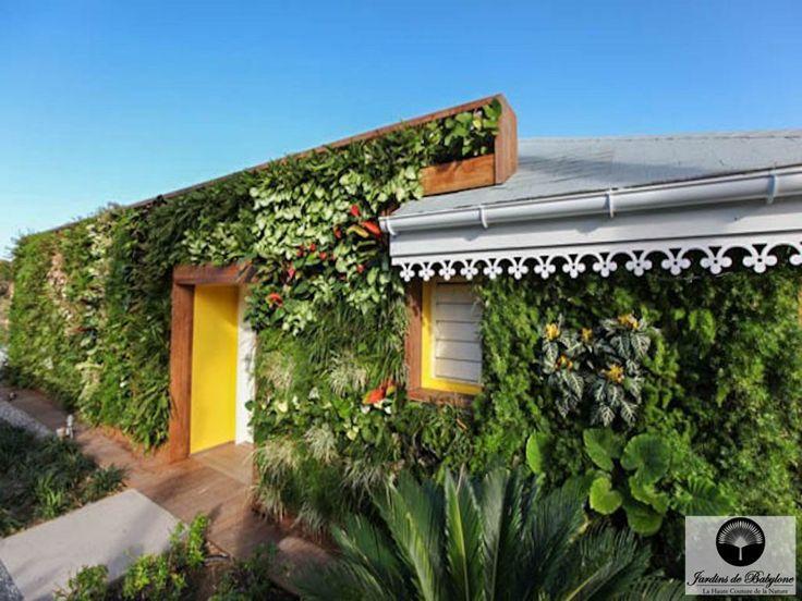 Jardin exotique: cap sur Saint-Barthélemy! - Jardins de Babylone  #murvegetalexterieur #greenwall #verticalgarden