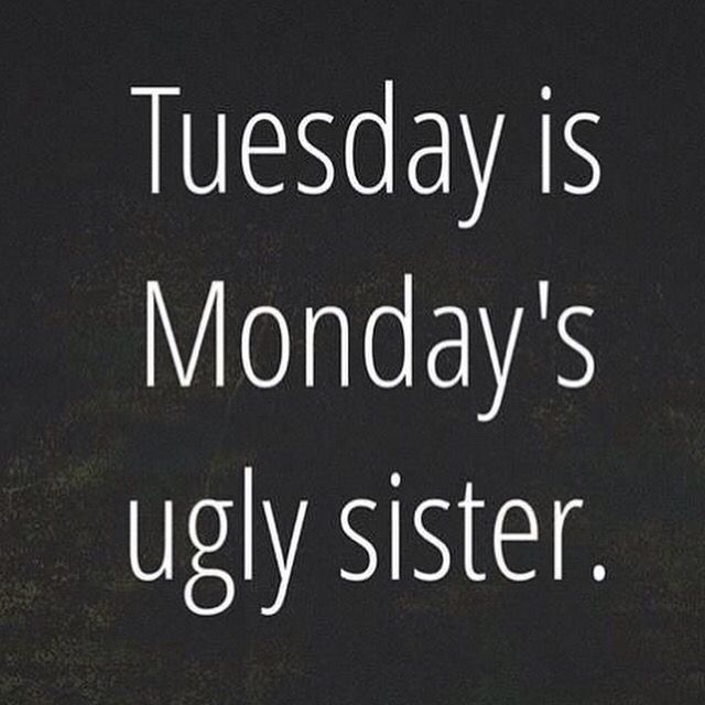 LOL!! #Tuesday #Humor
