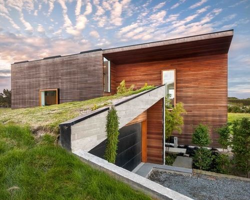 Living roofs put down roots | Green Home Guide