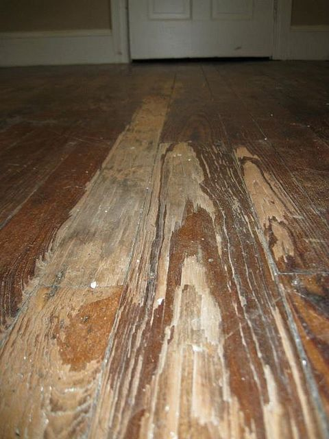 How to refinish a hardwood floor — the complete manifesto | Offbeat Home