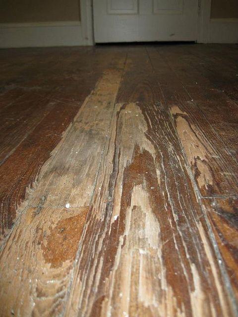 25 best ideas about hardwood floor refinishing on pinterest for Refinishing painted hardwood floors