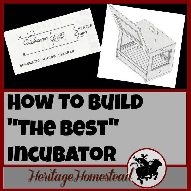 """How to Build """"The Best"""" Incubator"""