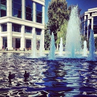 Lunch By The Fountains At The Water Garden In Santa Monica. Youu0027d Think