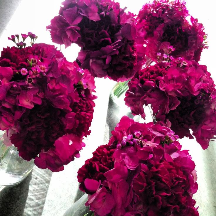Fuchsia Wedding Flowers: 1000+ Images About Fuchsia, Dark Grey Or Black Wedding On