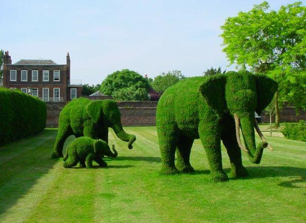 gartenideen faszinierend formschnittgärtnerei elephanten  Quelle: Alle Ideen