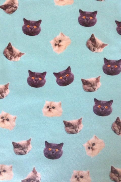The perfect wallpaper for the Crazy Cat Lady house! Or sheets, or curtains or.....
