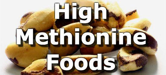 Top 10 Foods Highest in Methionine