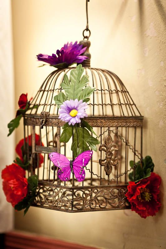 Bird Cage Decoration                                                                                                                                                                                 More