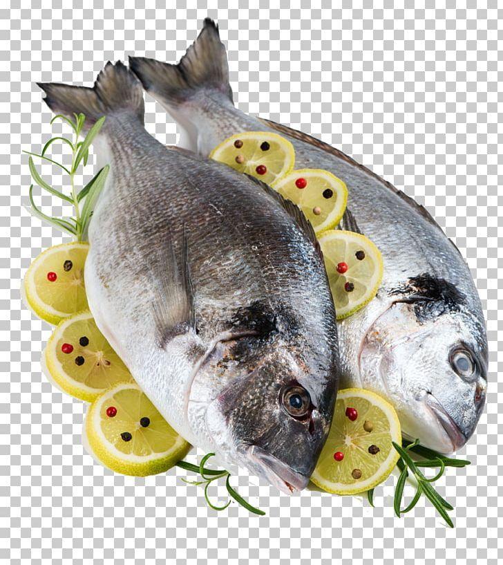 Fish Gilt Head Bream Lemon Porgies Ingredient Png Animal Source Foods Aquarium Fish Bass Black Pepper Bream Fish Colorful Fish Png