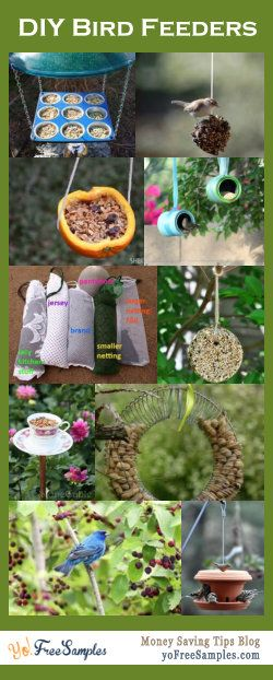 Make some feeders for your feathered friends. DIY bird feeders - some easy enough for even kids to make. Read more here: http://yofreesamples.com/money-saving-blog/diy-bird-feeders/