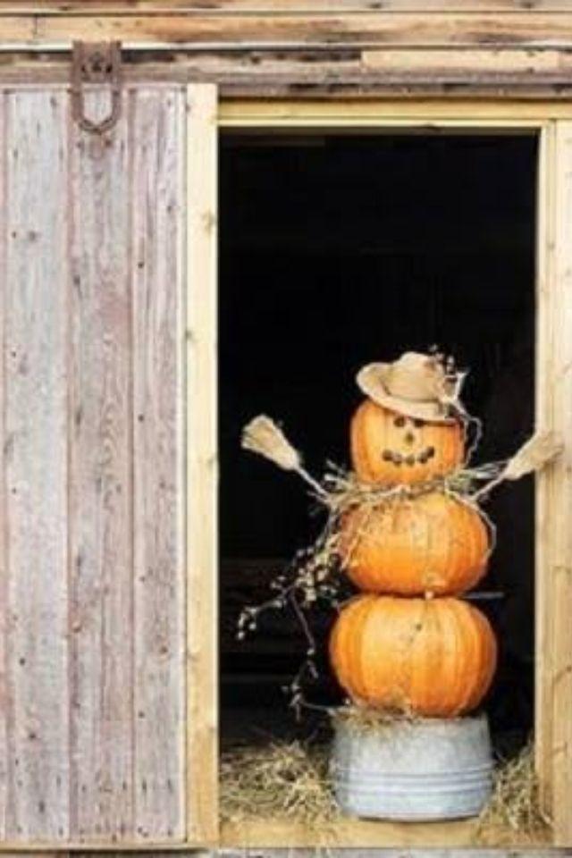 Pumpkin fun for fall!