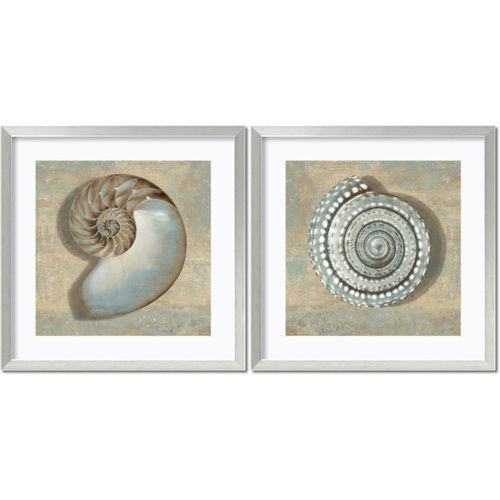 Aqua Shells by Caroline Kelly: 26.88 x 26.88 Print Reproduction, Set of Two