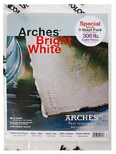 Arches Watercolor Paper 300 lb. cold press bright white 22 in. x 30 in. pack of 3