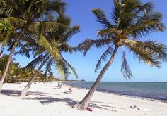 Free beaches in the Florida Keys: Our map helps you find the best