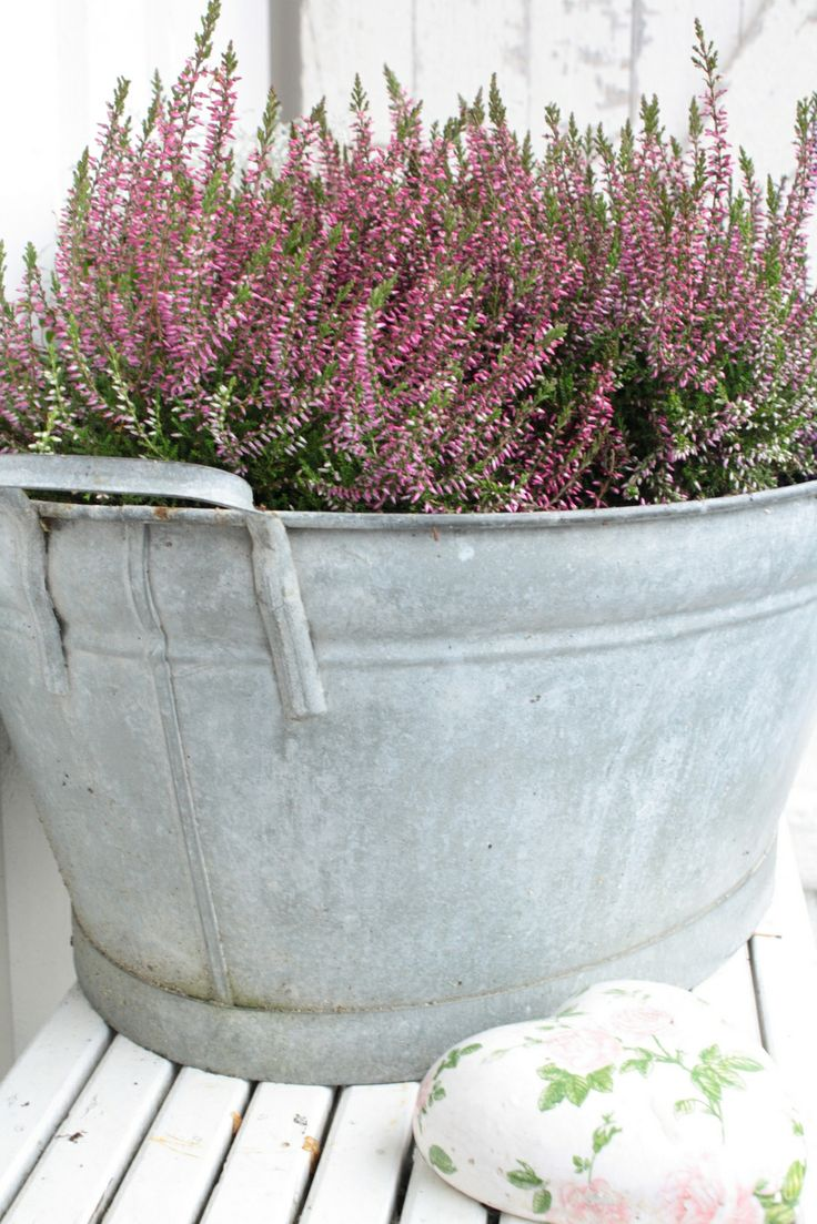 720 best galvanized wash tubs and buckets and such images for Large galvanized buckets for flowers