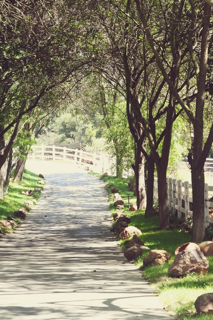 Saddlerock Ranch. Love the old winding road.