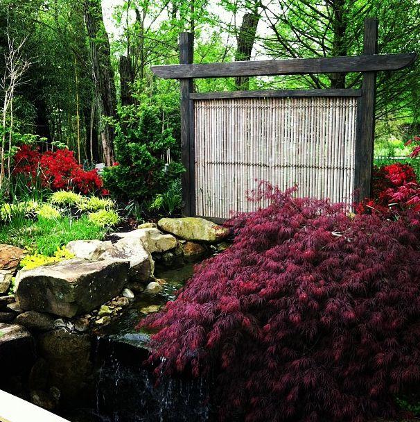 Japanese Inspired Garden Part 93