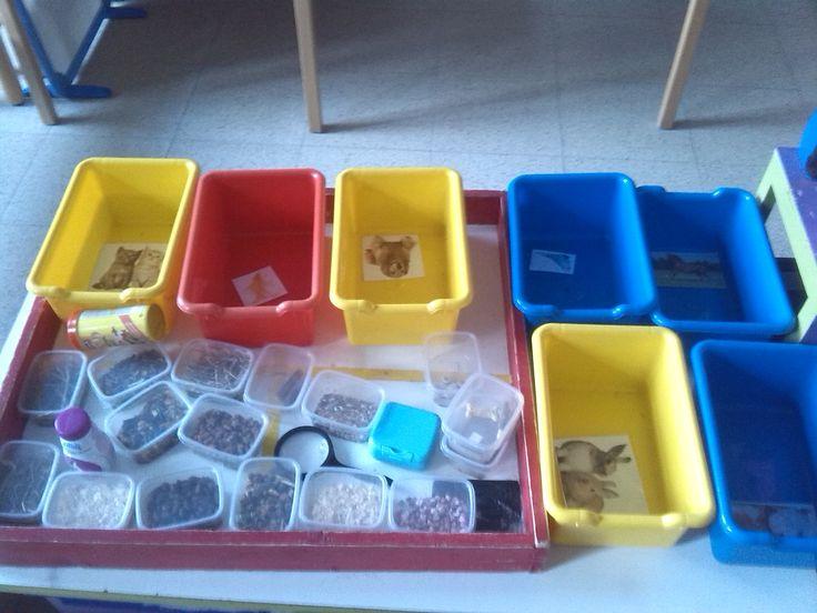 thema huisdieren: Voedsel en wat in hun kot/aquarium/stal is sorteren per dier.