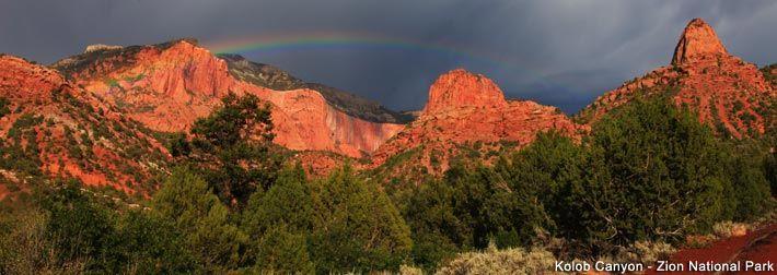 Zion's Kolob Canyons | Utah.com
