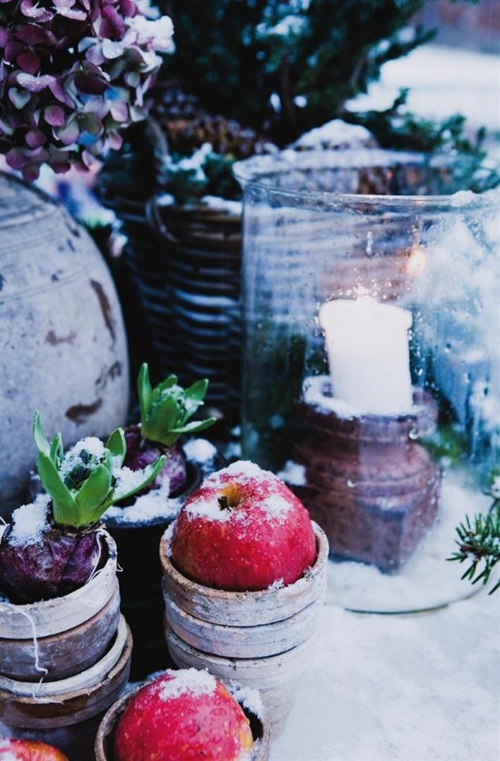 WinteryWinter Fal, Winter Snow, Winter Apples, Winter Dreams, Winter Wonderland, Cosy Winter, Winter Tablescapes, Teas Parties, Winter Ski