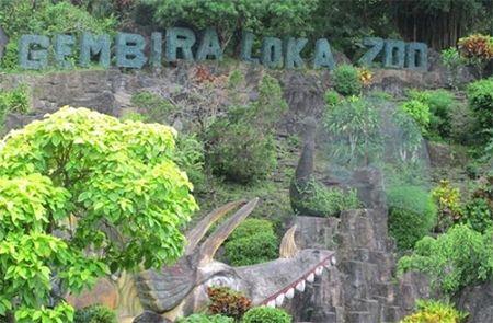 Gembira Loka Zoo Jogja