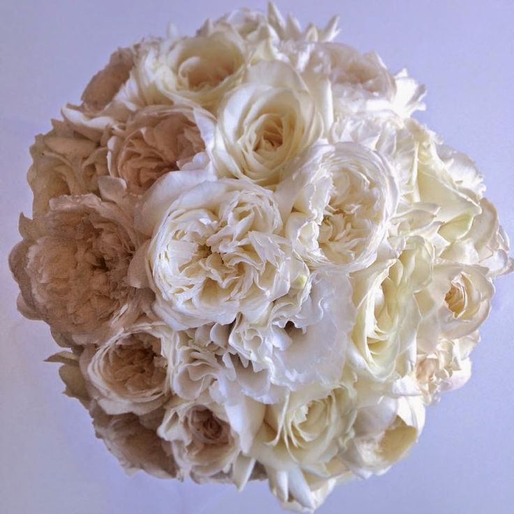 """Naomi Rose Floral Design: Preview """"Amy & Michael 11th January 2015"""" peony roses, David Austin roses, bridal bouquet"""