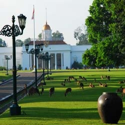 Istana Bogor - Info wisata hotel sejarah