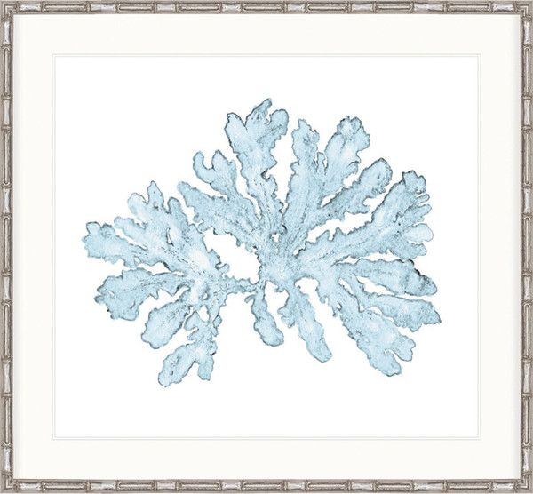 Coral Prints Beautiful watercolour print series or blue coral. Framed in a matt silver bamboo frame. A wonderful addition to any room. #coralpicture #art #coralart