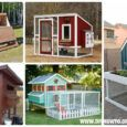 DIY Wood Chicken Coop Free Plans
