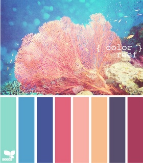reef: Design Seeds, Sea Colors Palettes, Reefs Colors, Colour Palettes, Beaches Colors Palettes, Beaches Houses Colors Palettes, Colors Inspiration, Colour Schemes, Coral Reefs